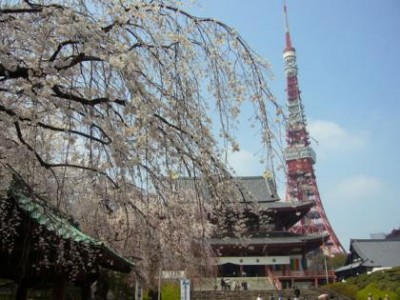 東京タワーth_